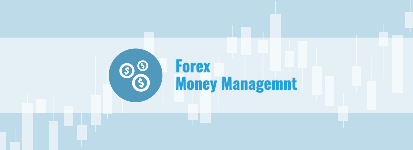 Money management forex software