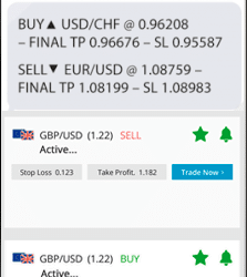 daily forex signals 11